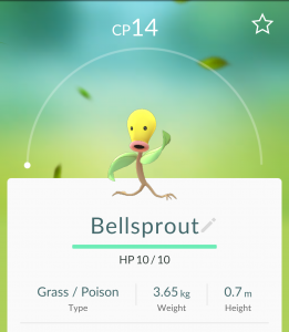 Pokémon Go Bellsprout